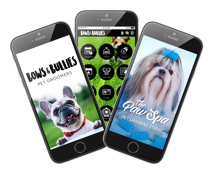 Photo of Example of Custom Pet Grooming Business Apps Interface